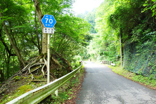 丹沢 県道70号道路の写真素材 [FYI03006940]