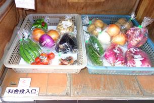 野菜の無人販売所の写真素材 [FYI03006943]