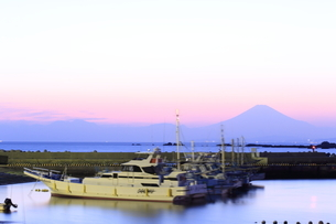 葉山の真名瀬漁港の写真素材 [FYI03007130]