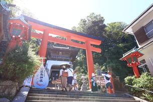 江の島 江島神社の瑞心門の写真素材 [FYI03007305]