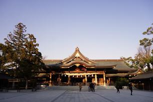寒川神社の菊の御紋、の写真素材 [FYI03007448]