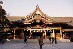 寒川神社の菊の御紋、の写真素材 [FYI03007449]