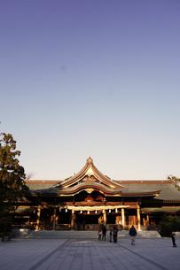寒川神社の菊の御紋、の写真素材 [FYI03007450]