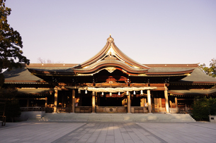 寒川神社の菊の御紋、の写真素材 [FYI03007451]