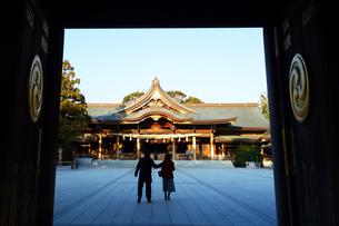 寒川神社の菊の御紋、の写真素材 [FYI03007455]