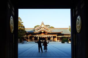 寒川神社の菊の御紋、の写真素材 [FYI03007456]