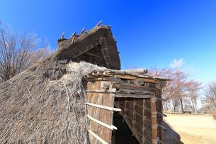 大塚歳勝土遺跡公園の写真素材 [FYI03007523]