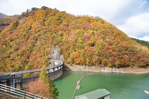 秋の鳴子ダムの写真素材 [FYI03007757]