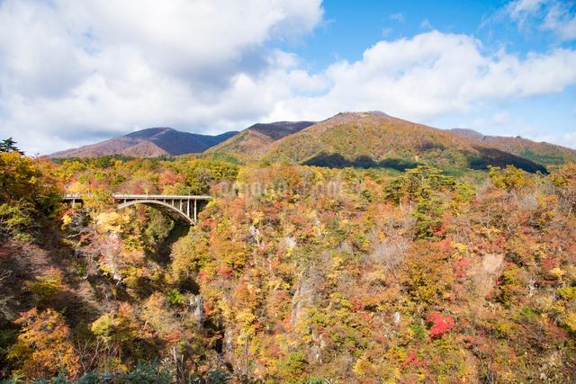 秋の鳴子峡の写真素材 [FYI03007761]