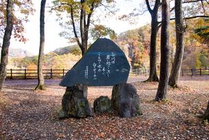 結城哀草果歌碑の写真素材 [FYI03007766]