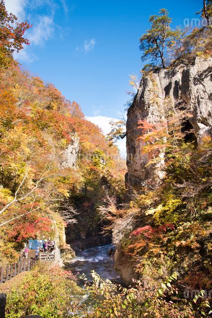 秋の鳴子峡の写真素材 [FYI03007772]