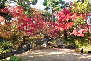 洗心庵の秋の写真素材 [FYI03007776]