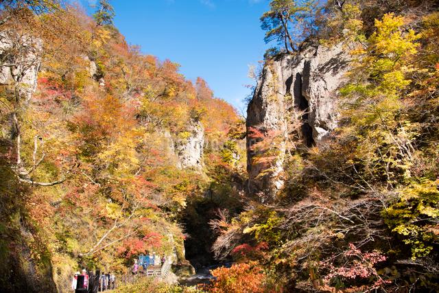 秋の鳴子峡の写真素材 [FYI03007778]