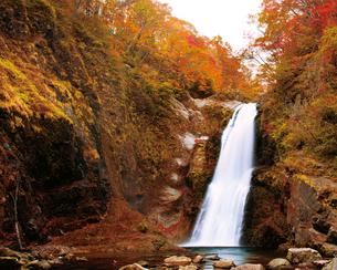 紅葉の秋保大滝の写真素材 [FYI03008101]