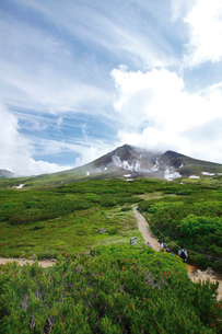姿見散策コースから旭岳を望むの写真素材 [FYI03008294]
