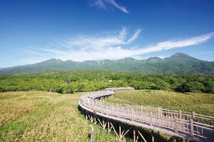 知床五湖の木道から知床連山を望むの写真素材 [FYI03008323]