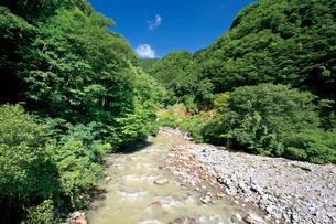 苗名滝への遊歩道の写真素材 [FYI03008395]