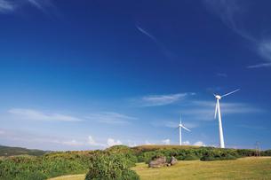 東崎周辺の風力発電の写真素材 [FYI03009143]