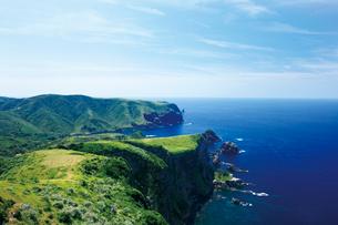 夏の国賀海岸 摩天崖の写真素材 [FYI03009156]