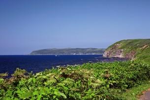 焼尻島から見える天売島の写真素材 [FYI03009451]
