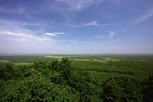 夏の釧路湿原 サテライト展望台からの眺めの写真素材 [FYI03009462]