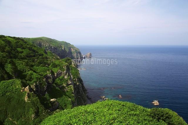 観音崎展望台からの眺めの写真素材 [FYI03009722]