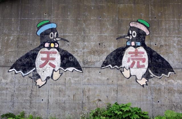 天売島の風景の写真素材 [FYI03009728]