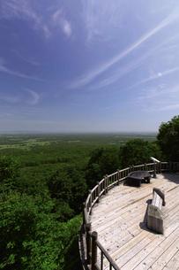 夏の釧路湿原 サテライト展望台からの眺めの写真素材 [FYI03009801]