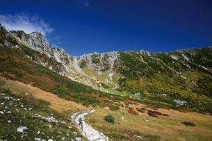 紅葉の駒ヶ岳登山道の写真素材 [FYI03010110]