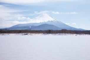 他手合浜から望む精進湖と富士山の写真素材 [FYI03010163]