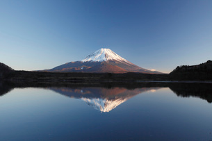 他手合浜から望む夕景の精進湖と富士山の写真素材 [FYI03010164]