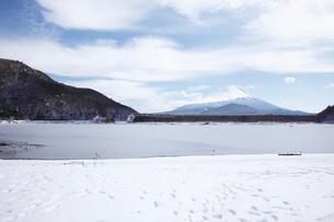 他手合浜から望む精進湖と富士山の写真素材 [FYI03010167]