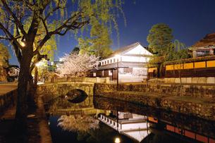 倉敷美観地区の夜桜の写真素材 [FYI03010310]