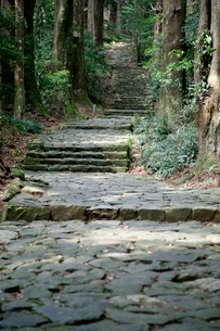 熊野古道の大門坂の写真素材 [FYI03010362]