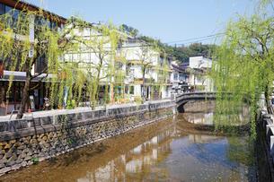 春の城崎温泉,大谿川の写真素材 [FYI03010609]
