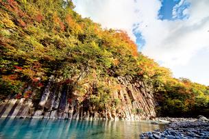 紅葉の松川渓谷にそそり立つ玄武岩の写真素材 [FYI03011346]