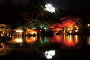 錦秋の玄宮園ライトアップの写真素材 [FYI03011372]