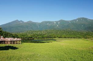 知床五湖の高架木道の写真素材 [FYI03011513]
