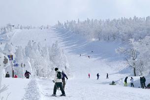 山形蔵王の樹氷の写真素材 [FYI03011753]