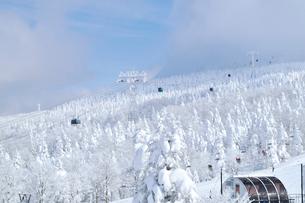 山形蔵王の樹氷の写真素材 [FYI03011768]