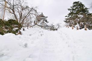 横手雪まつり,かまくらの写真素材 [FYI03011790]