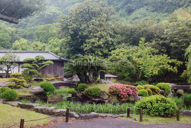 初夏の緑深い仙巌園の写真素材 [FYI03011797]