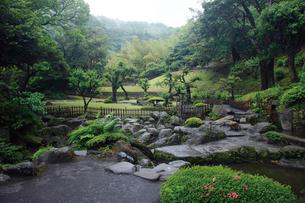 初夏の緑深い仙巌園の写真素材 [FYI03011811]