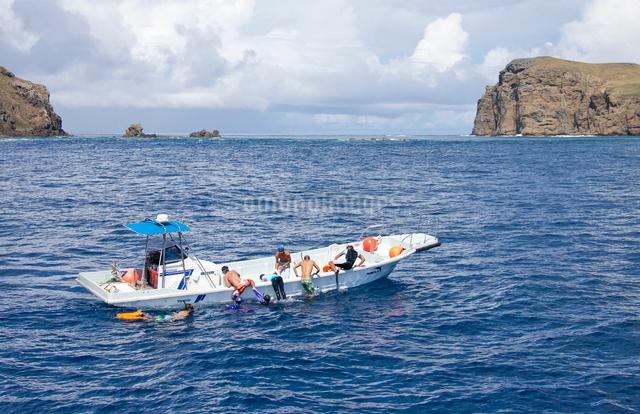 小笠原諸島にてイルカウォッチングツアーに参加する人々の写真素材 [FYI03012152]