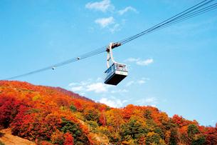 紅葉と八海山ロープウェーの写真素材 [FYI03012413]