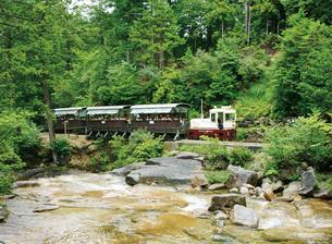 赤沢森林鉄道トロッコ列車の写真素材 [FYI03012429]