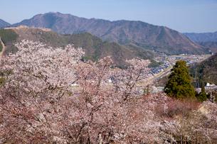 立雲峡から望む竹田城の写真素材 [FYI03012478]