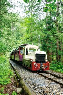 赤沢森林鉄道のトロッコ列車の写真素材 [FYI03012480]