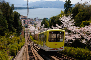 桜の傘松公園 ケーブルカーの写真素材 [FYI03012485]