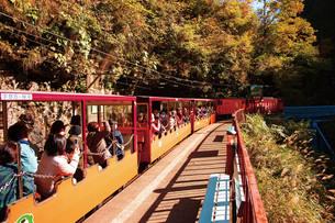 黒薙駅に停車する黒部峡谷トロッコ電車の写真素材 [FYI03012493]